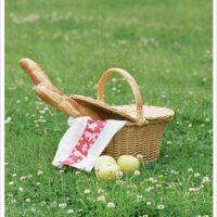 朝美人Lesson61♪芝生のある公園にピクニックに行ってみる