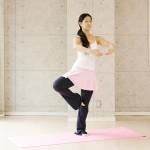 yoga meets ballet vol.8 パッセバランス(バレエ編)