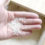 白米の炊き方(お米の香り編)