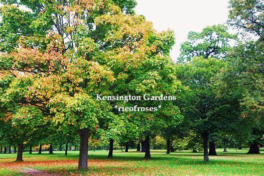 Kensinton park 22 oct 035_R