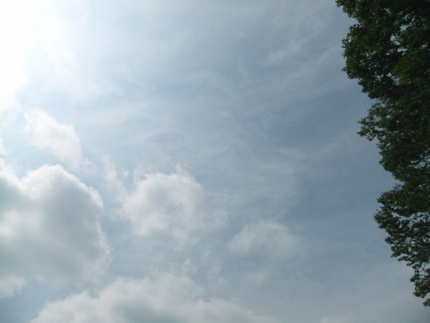 雲がどんどん流れていく夏の朝