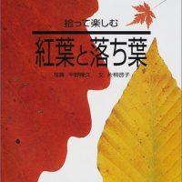 秋色満開!紅葉と落ち葉の本