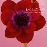 366日の誕生花