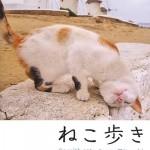 岩合光昭『ねこ歩き』世界各国の猫たちに出会える写真集