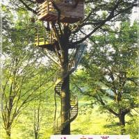 自然と遊ぶ①『ツリーハウスで夢を見る』