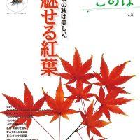 紅葉シーズンにオススメの一冊!『魅せる紅葉』