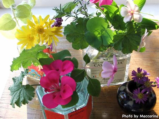 私も朝摘んだ庭の花を空き瓶に生けています。