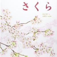 桜の一年を描いた美しい絵本『さくら』