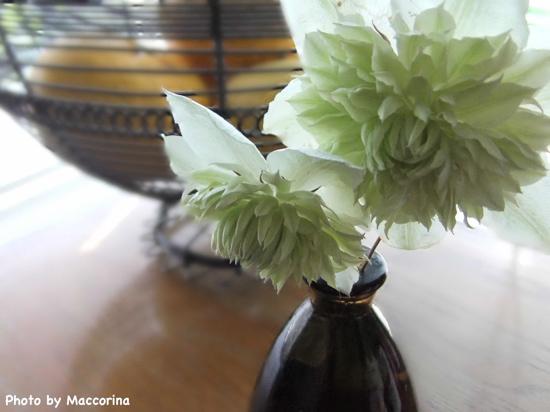 庭に咲いたクレマチスをベトナムの花器に生けて。