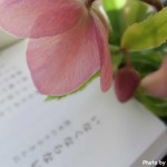 谷川俊太郎が捧ぐ『悼む詩』