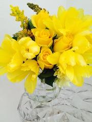 黄色のチューリップ