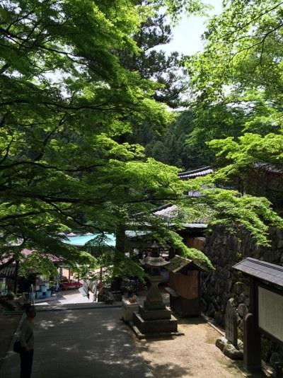大窪寺の新緑