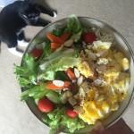 ハワイからお届け朝ごはん。最近のマイブームは、サラダ丼!