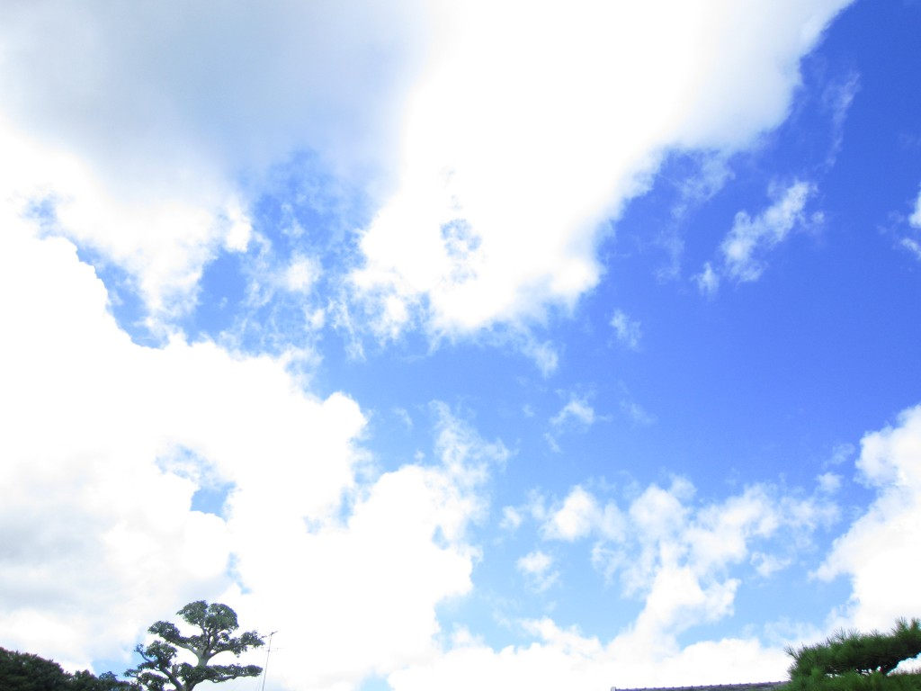 写真1(空)