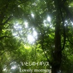 もののけの森へ。朝の冒険
