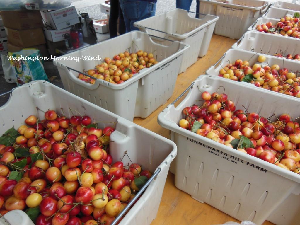 Farmers cherry1
