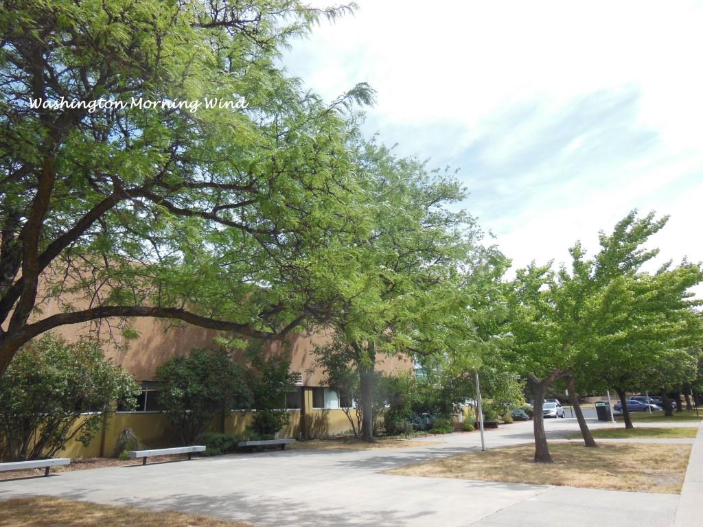 campus3 WSU