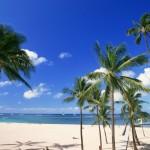 江の島にハワイがやってきた!南国気分を「海の家」で満喫しよう♪