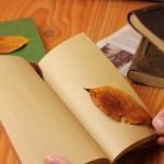 秋は朝活に最適!朝の「読書」がおすすめな理由と楽しみ方