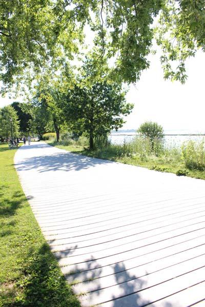 オンタリオ湖を眺めながら始まるトロントニアンの朝-_1new