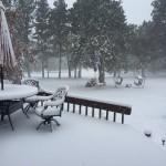 窓の外は、真っ白な雪景色。スノーシーズン到来です。
