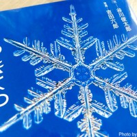 【日曜日の絵本】雪の結晶は天からの贈りもの