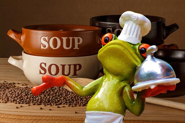 frog-929341_640