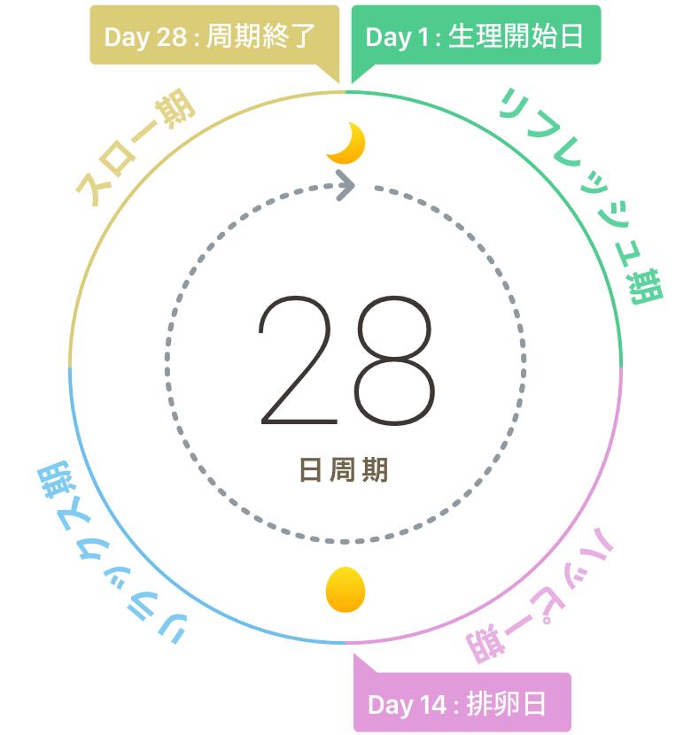 03-1_生理周期_Circle