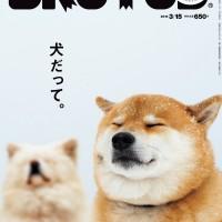 犬と人とのハッピーな関係って?BRUTUS大特集「犬だって。」