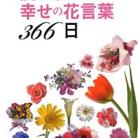 あなたや大切な人の花は?366日分の誕生花と幸せの花言葉