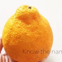 忙しい朝にピッタリな!このフルーツの名前は?