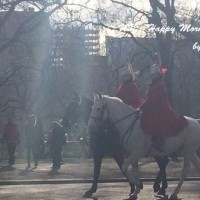 馬が居るのは日常な朝風景!ロンドンにて♪