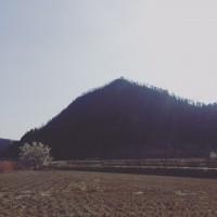 Mt.Togami 里山を登る