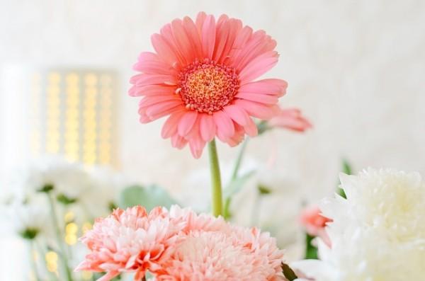 flowers-141294_640