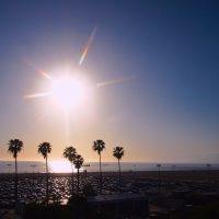 はじめまして。ロサンゼルスからMichelleです!