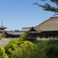 """早起きして訪れたい、京都の""""朝観光""""におすすめのお寺5選"""