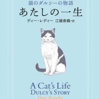 あたしはあたしの愛を全部与える—猫の視点で描く感動的な愛の物語