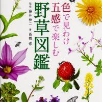 野に咲く花を好きになる『色で見分け五感で楽しむ野草図鑑』