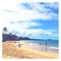 初めまして!ハワイよりごきげんな朝時間をお届けします!