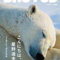 写真家・星野道夫の冒険と旅の世界へ。心を満たす、極北の物語