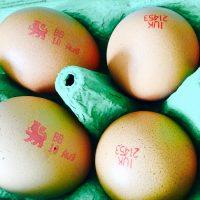 卵にライオン❓イギリスの卵についてるライオンマークの意味🦁