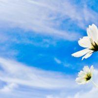 【今日のヒント】今日は「気象予報士の日」。秋の空の特徴とは?