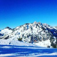 スキーをするは英語で?