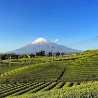 毎朝の楽しみ!丁寧な朝ごはん&富士山を眺める朝時間