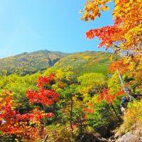 秋におすすめ♪関東のお出かけスポット6選