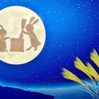 十五夜=満月とは限らない!そのワケは?