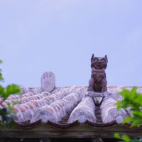 石垣島&竹富島で絶景に出会う!旅で楽しむ「朝散歩」のススメ♪