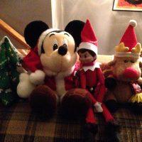 The Elf on the Shelf が戻ってきました。
