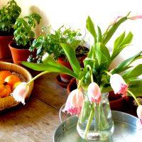 花のある暮らし ♡♡ピンクはやっぱり幸せ色♡♡ 簡単♪コスパ♪ピンクの花あしらい4選
