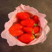 プロヴァンスの苺